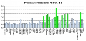 Click to enlarge image Protein Array in which CPTC-PSAT1-2 is screened against the NCI60 cell line panel for expression. Data is normalized to a mean signal of 1.0 and standard deviation of 0.5. Color conveys over-expression level (green), basal level (blue), under-expression level (red).