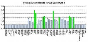 Click to enlarge image Protein Array in which CPTC-SERPINA1-1 is screened against the NCI60 cell line panel for expression. Data is normalized to a mean signal of 1.0 and standard deviation of 0.5. Color conveys over-expression level (green), basal level (blue), under-expression level (red).