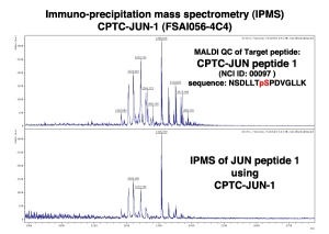 Click to enlarge image Immuno-Precipitation Mass Spectrometry using CPTC-JUN-1 antibody with CPTC-JUN proto-Oncogene peptide 1 (phosphorylated) as the target antigen.