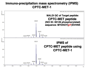 Click to enlarge image Immuno-Precipitation Mass Spectrometry using CPTC-MET-1 antibody with CPTC-MET peptide (NCI ID 00126) as the target antigen (sequence: MYDKEY(pY)SVHNK)