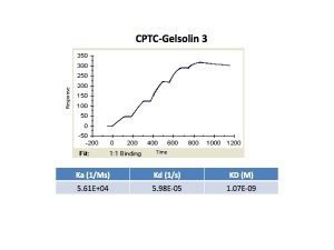Click to enlarge image Kinetic titration data for Gelsolin-3 antibody using Biacore SPR method