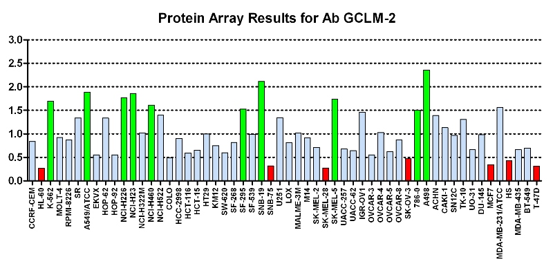 Click to enlarge image Protein Array in which CPTC-GCLM-2  is screened against the NCI60 cell line panel for expression. Data is normalized to a mean signal of 1.0 and standard deviation of 0.5. Color conveys over-expression level (green), basal level (blue), under-expression level (red).