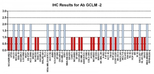 Click to enlarge image Immunohistochemistry of CPTC-GCLM-2 for NCI60 Cell Line Array. Data scored as: