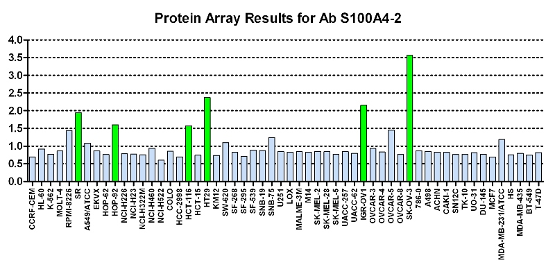 Click to enlarge image Protein Array in which CPTC-AKR1B1-1 is screened against the NCI60 cell line panel for expression. Data is normalized to a mean signal of 1.0 and standard deviation of 0.5. Color conveys over-expression level (green), basal level (blue), under-expression level (red).