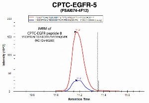 Click to enlarge image Immuno-MRM chromatogram of CPTC-EGFR-5 antibody with CPTC-EGFR peptide 8 (NCI ID#00280) as target