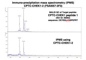Click to enlarge image Immuno-Precipitation Mass Spectrometry using CPTC-CHEK1-2 antibody with CPTC-CHEK1 peptide 1 (NCI 00093; phosphorylated) as the target antigen.