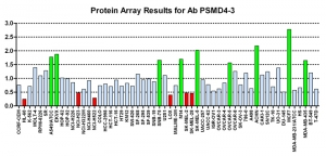 Click to enlarge image Protein Array in which CPTC-PSMD4-3 is screened against the NCI60 cell line panel for expression. Data is normalized to a mean signal of 1.0 and standard deviation of 0.5. Color conveys over-expression level (green), basal level (blue), under-expression level (red).