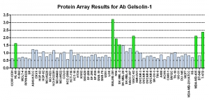 Click to enlarge image Protein Array in which CPTC-Gelsolin-1 CPTC-AKR1B1-1 is screened against the NCI60 cell line panel for expression. Data is normalized to a mean signal of 1.0 and standard deviation of 0.5. Color conveys over-expression level (green), basal level (blue), under-expression level (red).