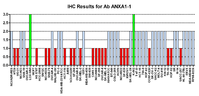 Click to enlarge image Immuno-histochemistry of CPTC-ANXA1-1 for NCI60  Cell Line Array with titer 1:4900