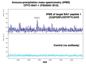 Click to enlarge image Immuno-Precipitation Mass Spectrometry using CPTC-BAI1-1 antibody with CPTC-BAI1 peptide 1 (NCI 00083) as the target antigen.