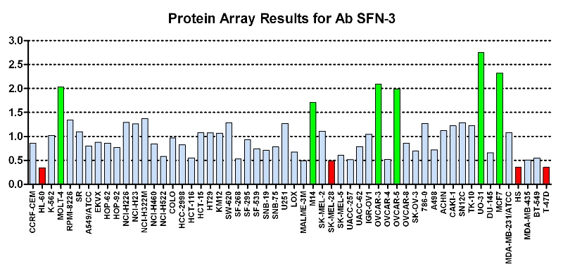 Click to enlarge image Protein Array in which CPTC-SFN-3 is screened against the NCI60 cell line panel for expression. Data is normalized to a mean signal of 1.0 and standard deviation of 0.5. Color conveys over-expression level (green), basal level (blue), under-expression level (red).
